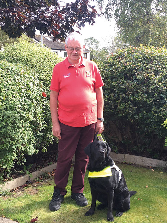 Looking forward to 2021 - Irish Guide Dogs