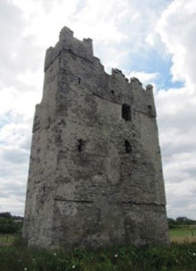 Conservation Works to Stella's Tower and St Catherine's Church Ruins