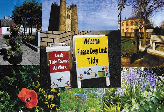 Lusk Tidy Towns Spring programme begins