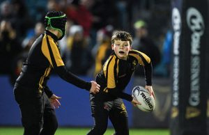 Malahide RFC aiming to create 'A Club for Everyone'