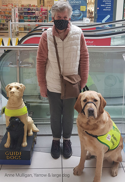 Tap to Donate '€3' machine for Irish Guide Dogs